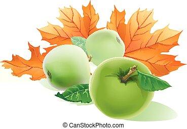 congés trois, jaune, leaves., automne, réaliste, pommes vertes, picture., tomber, érable