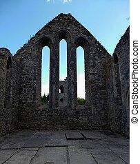 Cong Abbey Ruins Ashford Castle
