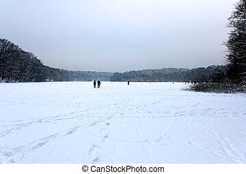 congelado, coberto, lago, neve