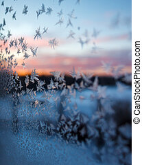 congelado, janela