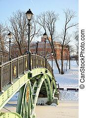 congelado, ponte, através, lagoa