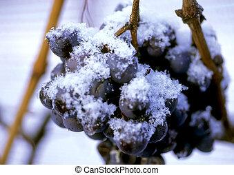 congelado, uvas
