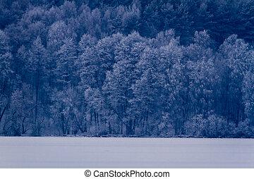 congelato, foresta, inverno, lago