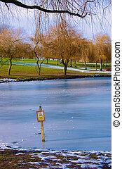 congelato, pericolo, lago, ghiaccio, magro