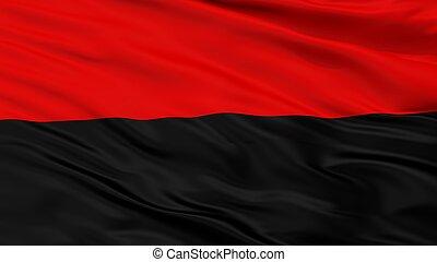 Congress Of Ukrainian Nationalism Flag Closeup View -...