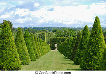 conical hedges lines and lawn, Versailles Chateau, France