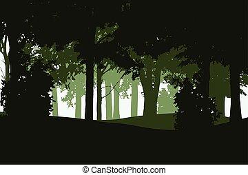 conifère, isolé, illustration, à feuilles caduques, vecteur, forêt, fond, couches, blanc, plusieurs