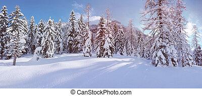 conifère, paysage, neige, arbres, couvert
