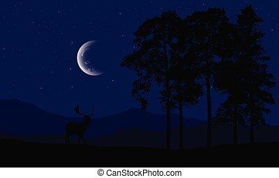 conifère, silhouette, montagne, ciel pourpre, arbres, cerf, illustration, réaliste, croissant, vecteur, forêt, étoiles, nuit, sous, paysage
