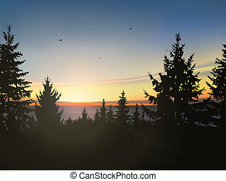 Coniferous forest, sea horizon and colorful sky. -...