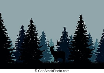 coniferous forest with a fallow deer - A green blue...