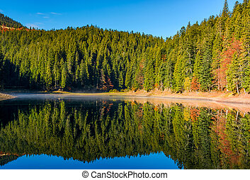 coniferous forest with lake in mountains. beautiful autumnal...