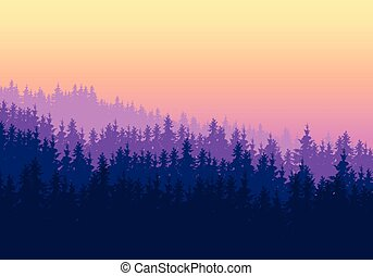 Coniferous forest with several layers under a purple yellow ...