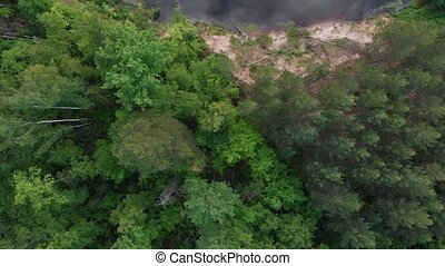 Coniferous green dense forest by the river. Aerial view