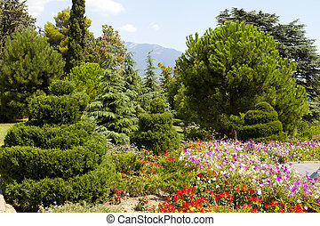 Coniferous park with flower bed