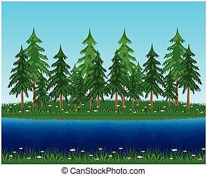 Vector illustration coniferous riverside wood. Beautiful year landscape