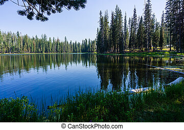 Coniferous trees forest reflected in the calm waters of Summit Lake, Lassen Volcanic National Park, Northern California