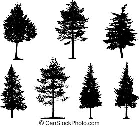 Coniferous Trees Silhouettes - Coniferous trees silhouettes...