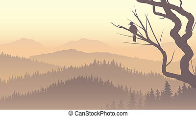 Coniferous wood in morning fog. - Vector panorama of wild...