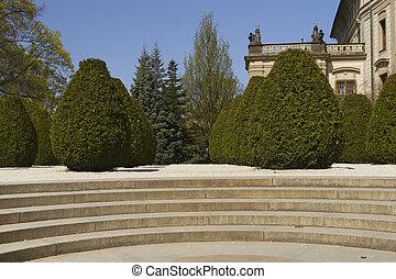Conifers in Prague Castle Garden