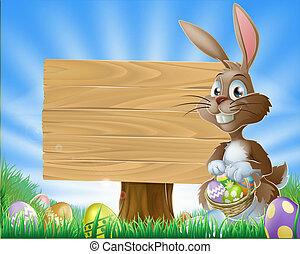 coniglietto pasqua, fondo, coniglio
