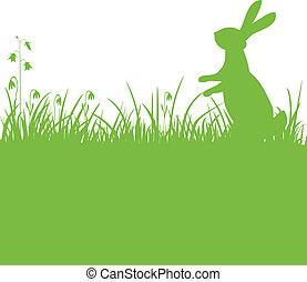 coniglietto pasqua, sfondo verde