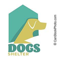 conjugal, adoption, animal, chouchou, chien, ou, abri,...