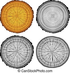 conjunto, árbol, corte, anillos, illustratio, fondo., vector...