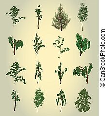 conjunto, árbol., elemento, para, design., vector