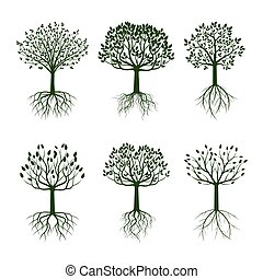conjunto, árboles verdes, con, roots., vector, illustration.