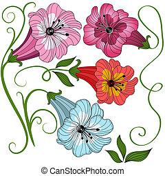 conjunto, aislado, flores
