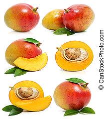 conjunto, aislado, mango, fruits, fresco, blanco