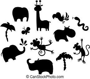 conjunto, animal, africano