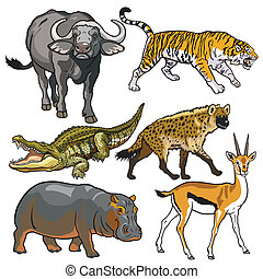 conjunto, animales, africano, salvaje