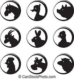 conjunto, animales, granja, vector, silueta, aves, icono