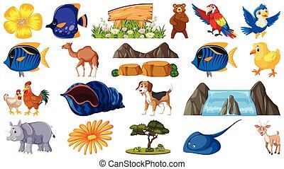 conjunto, animales, objetos, naturaleza