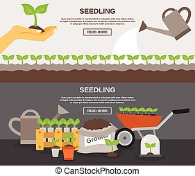 conjunto, bandera, planta de semillero
