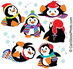 conjunto, caricatura, pingüinos