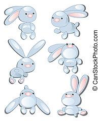 conjunto, conejos