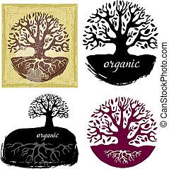 conjunto, de, árbol, símbolos