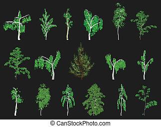 conjunto, de, árboles., vector