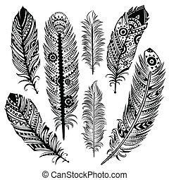 conjunto, de, étnico, plumas