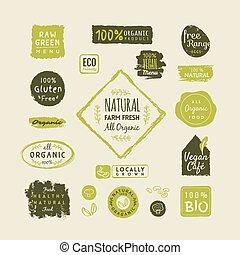 conjunto, de, alimento orgánico, etiquetas, y, elementos