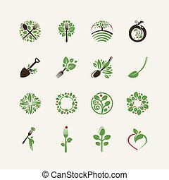conjunto, de, alimento orgánico, iconos
