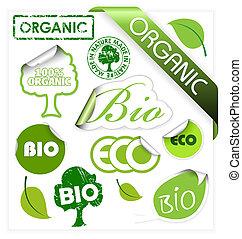 conjunto, de, bio, eco, orgánico, elementos