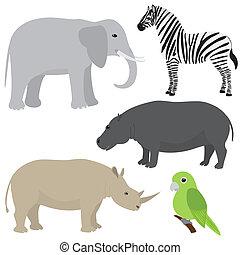 conjunto, de, caricatura, africano, animales