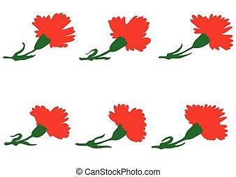 conjunto, de, claveles, flores