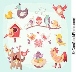 conjunto, de, colorido, primavera, aves