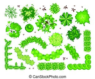 conjunto, de, diferente, árboles verdes, arbustos, hedges., punta la vista, para, diseño de paisaje, projects., vector, ilustración, aislado, en, white.