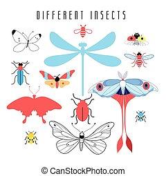 conjunto, de, diferente, insectos
